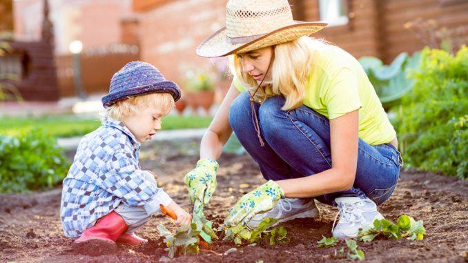 Ogród bezpieczny dla dziecka