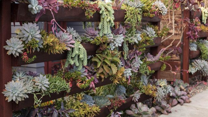 Wertykalny ogród na balkonie